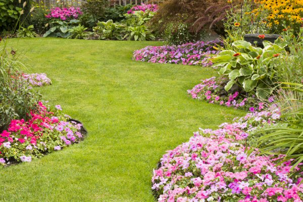 Are you satisfied with your landscape deign?